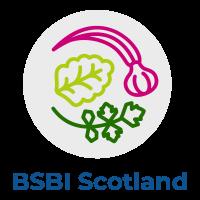 BSBI Scotland Logo